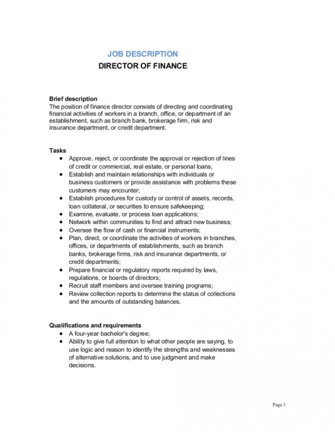 Director Of Finance Job Description Template