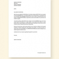 Appeal Letter For Promotion