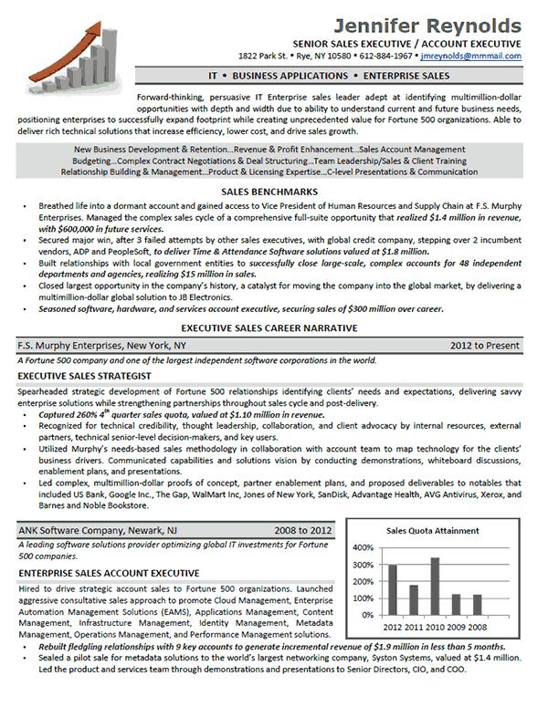Enterprise Sales Executive Resume Example