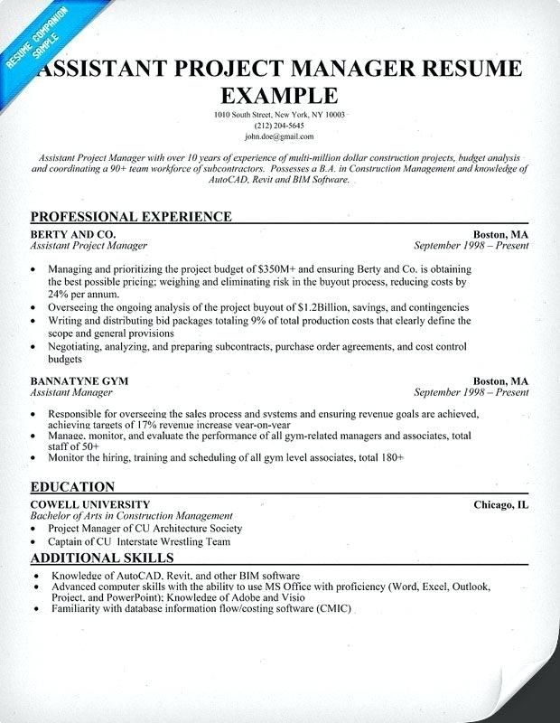 Project Coordinator Sample Resume Lebenslauf Vorlagen Resume