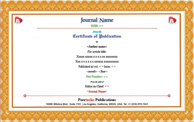 Publication E
