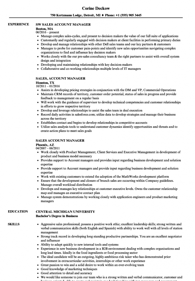 Sales Account Manager Resume Samples