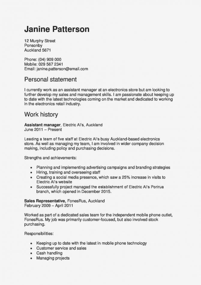 Social Media Resume Example Unique Media Planning Manager Resume