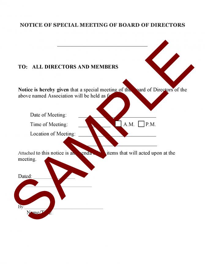 Notice Of Special Meeting Of Board Of Directors