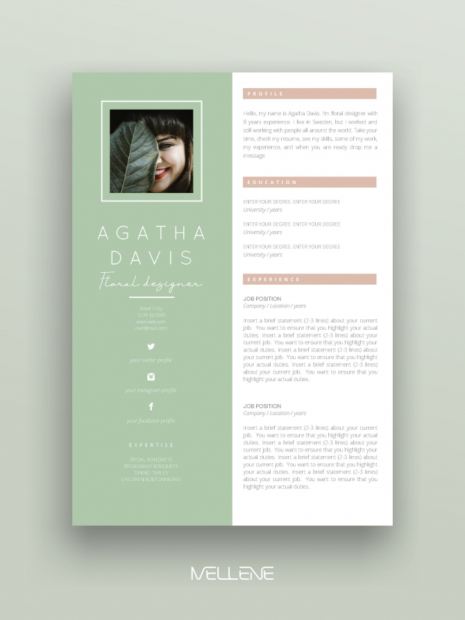 Resume Template  Pages  Cv Template Cover Letter  Instant